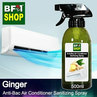 Anti-Bac Air Conditioner Sanitizing Spray (ABACS) - Ginger - 500ml