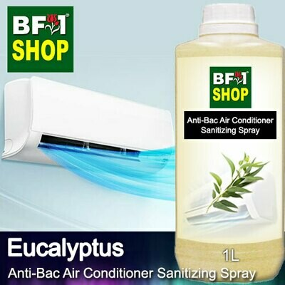 Anti-Bac Air Conditioner Sanitizing Spray (ABACS) - Eucalyptus - 1L