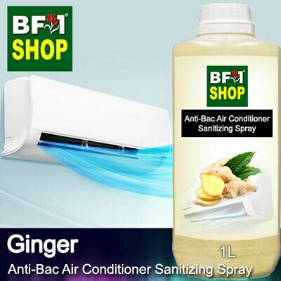 Anti-Bac Air Conditioner Sanitizing Spray (ABACS) - Ginger - 1L
