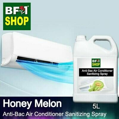 Anti-Bac Air Conditioner Sanitizing Spray (ABACS) - Honey Melon - 5L