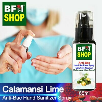 Anti-Bac Hand Sanitizer Spray with 75% Alcohol (ABHSS) - lime - Calamansi Lime - 65ml