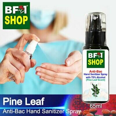 Anti-Bac Hand Sanitizer Spray with 75% Alcohol (ABHSS) - Pine Leaf - 65ml