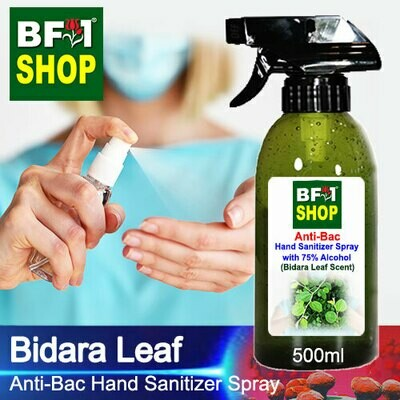 Anti-Bac Hand Sanitizer Spray with 75% Alcohol (ABHSS) - Bidara - 500ml