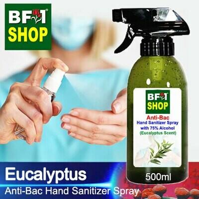 Anti-Bac Hand Sanitizer Spray with 75% Alcohol (ABHSS) - Eucalyptus - 500ml