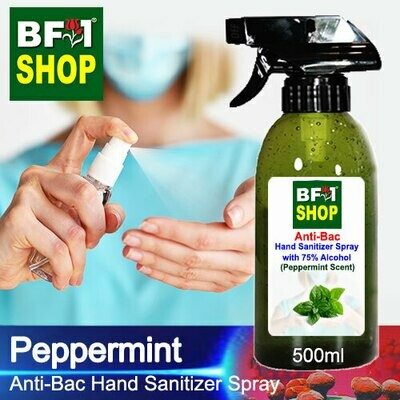 Anti-Bac Hand Sanitizer Spray with 75% Alcohol (ABHSS) - mint - Peppermint - 500ml