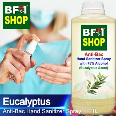 Anti-Bac Hand Sanitizer Spray with 75% Alcohol (ABHSS) - Eucalyptus - 1L