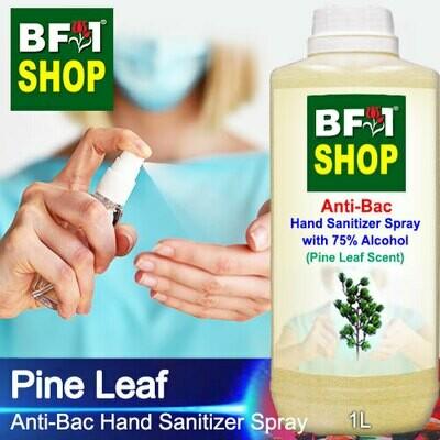 Anti-Bac Hand Sanitizer Spray with 75% Alcohol (ABHSS) - Pine Leaf - 1L