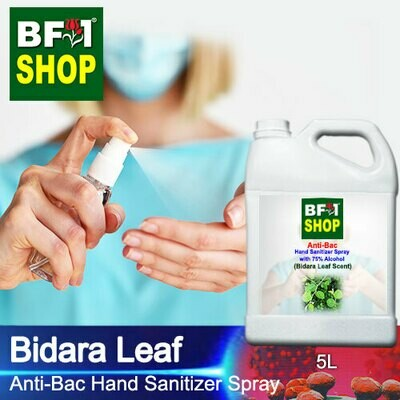 Anti-Bac Hand Sanitizer Spray with 75% Alcohol (ABHSS) - Bidara - 5L