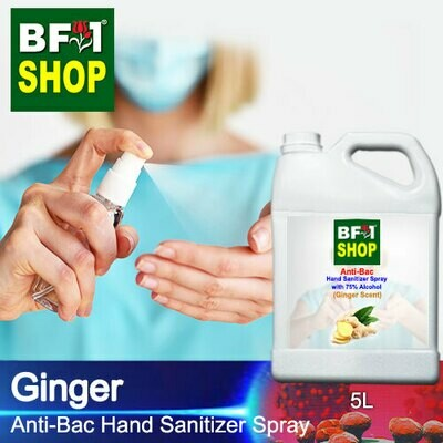 Anti-Bac Hand Sanitizer Spray with 75% Alcohol (ABHSS) - Ginger - 5L