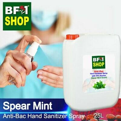 Anti-Bac Hand Sanitizer Spray with 75% Alcohol (ABHSS) - mint - Spear Mint - 25L
