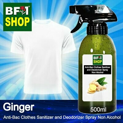 Anti-Bac Clothes Sanitizer and Deodorizer Spray (ABCSD) - Non Alcohol with Ginger - 500ml