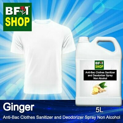 Anti-Bac Clothes Sanitizer and Deodorizer Spray (ABCSD) - Non Alcohol with Ginger - 5L