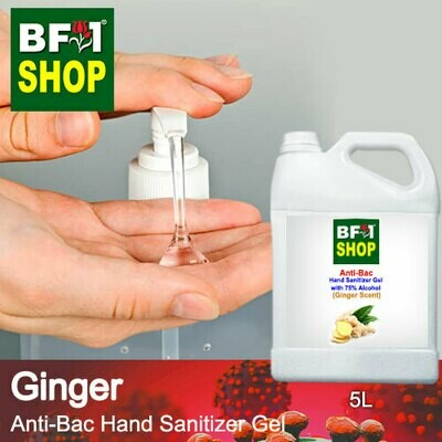 Anti-Bac Hand Sanitizer Gel with 75% Alcohol (ABHSG) - Ginger - 5L