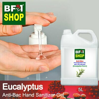 Anti-Bac Hand Sanitizer Gel with 75% Alcohol (ABHSG) - Eucalyptus - 5L