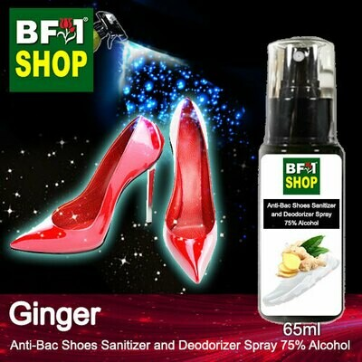 Anti-Bac Shoes Sanitizer and Deodorizer Spray (ABSSD) - 75% Alcohol with Ginger - 65ml