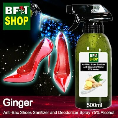 Anti-Bac Shoes Sanitizer and Deodorizer Spray (ABSSD) - 75% Alcohol with Ginger - 500ml