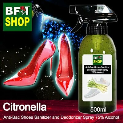 Anti-Bac Shoes Sanitizer and Deodorizer Spray (ABSSD) - 75% Alcohol with Citronella - 500ml