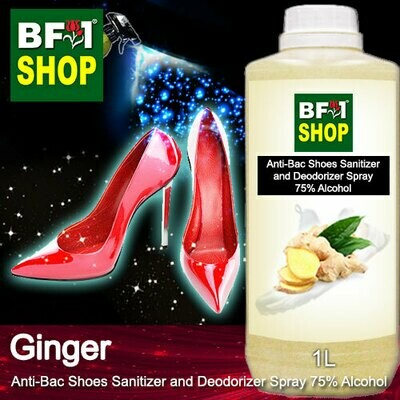 Anti-Bac Shoes Sanitizer and Deodorizer Spray (ABSSD) - 75% Alcohol with Ginger - 1L