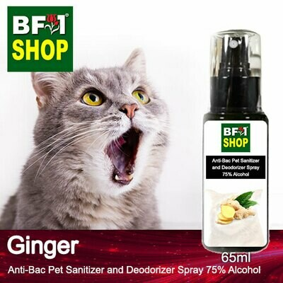 Anti-Bac Pet Sanitizer and Deodorizer Spray (ABPSD-Cat) - 75% Alcohol with Ginger - 65ml for Cat and Kitten