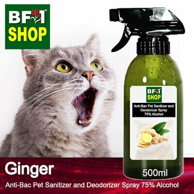Anti-Bac Pet Sanitizer and Deodorizer Spray (ABPSD-Cat) - 75% Alcohol with Ginger - 500ml for Cat and Kitten