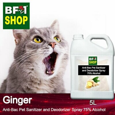 Anti-Bac Pet Sanitizer and Deodorizer Spray (ABPSD-Cat) - 75% Alcohol with Ginger - 5L for Cat and Kitten