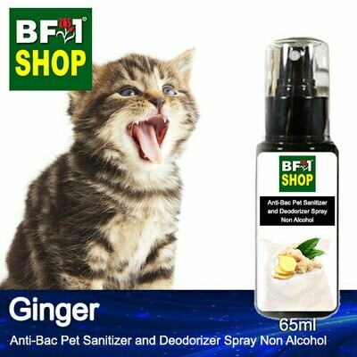 Anti-Bac Pet Sanitizer and Deodorizer Spray (ABPSD-Cat) - Non Alcohol with Ginger - 65ml for Cat and Kitten