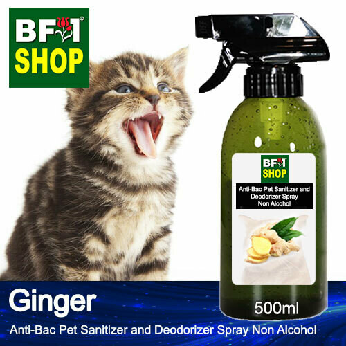Anti-Bac Pet Sanitizer and Deodorizer Spray (ABPSD-Cat) - Non Alcohol with Ginger - 500ml for Cat and Kitten