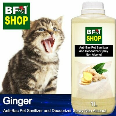 Anti-Bac Pet Sanitizer and Deodorizer Spray (ABPSD-Cat) - Non Alcohol with Ginger - 1L for Cat and Kitten