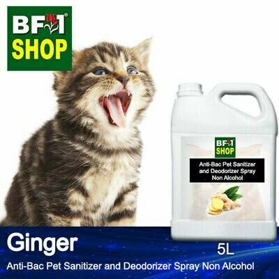 Anti-Bac Pet Sanitizer and Deodorizer Spray (ABPSD-Cat) - Non Alcohol with Ginger - 5L for Cat and Kitten