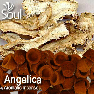 Aromatic Incense (21's) - Angelica