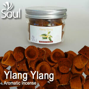 Aromatic Incense (21's) - Ylang Ylang