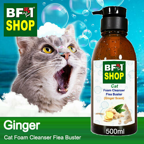 Cat Foam Cleanser Flea Buster (CFC-Cat) - Ginger - 500ml ⭐⭐⭐⭐⭐