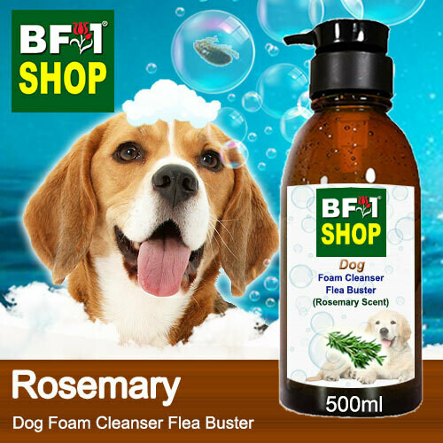 Dog Foam Cleanser Flea Buster (DFC-Dog) - Rosemary - 500ml ⭐⭐⭐⭐⭐