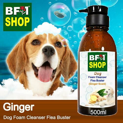 Dog Foam Cleanser Flea Buster (DFC-Dog) - Ginger - 500ml ⭐⭐⭐⭐⭐