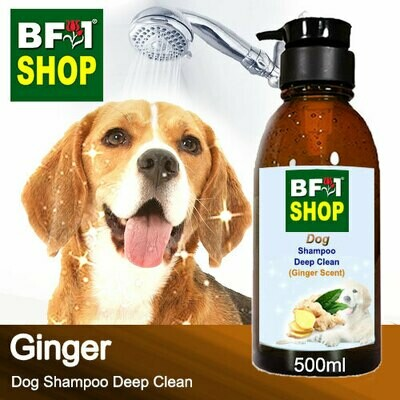 Dog Shampoo Deep Clean (DSDC-Dog) - Ginger - 500ml ⭐⭐⭐⭐⭐