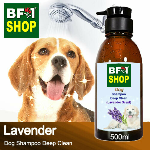 Dog Shampoo Deep Clean (DSDC-Dog) - Lavender - 500ml ⭐⭐⭐⭐⭐