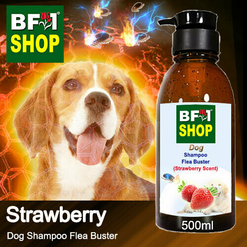Dog Shampoo Flea Buster (DSO-Dog) - Strawberry - 500ml ⭐⭐⭐⭐⭐