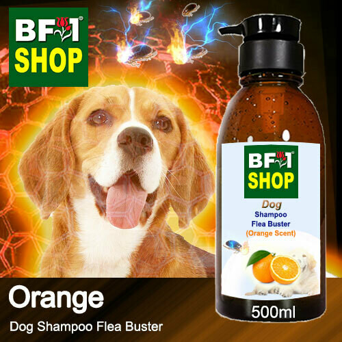 Dog Shampoo Flea Buster (DSO-Dog) - Orange - 500ml ⭐⭐⭐⭐⭐