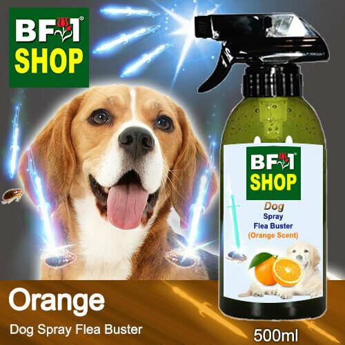 Dog Spray Flea Buster (DSY-Dog) - Orange - 500ml ⭐⭐⭐⭐⭐