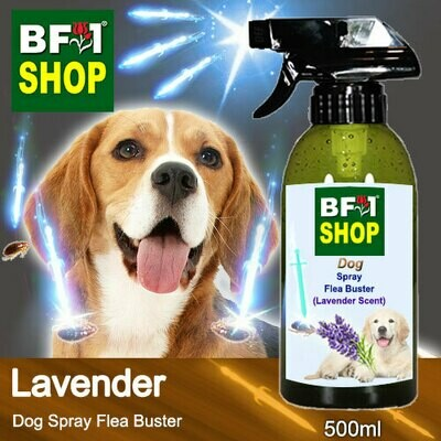Dog Spray Flea Buster (DSY-Dog) - Lavender - 500ml ⭐⭐⭐⭐⭐