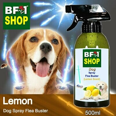 Dog Spray Flea Buster (DSY-Dog) - Lemon - 500ml ⭐⭐⭐⭐⭐