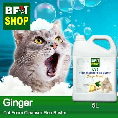 Cat Foam Cleanser Flea Buster (CFC-Cat) - Ginger - 5L ⭐⭐⭐⭐⭐