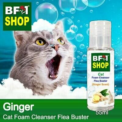 Cat Foam Cleanser Flea Buster (CFC-Cat) - Ginger - 55ml ⭐⭐⭐⭐⭐