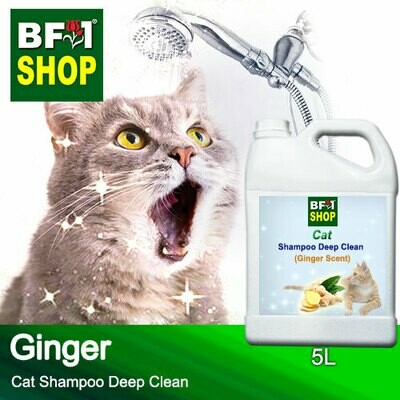 Cat Shampoo Deep Clean (CSDC-Cat) - Ginger - 5L ⭐⭐⭐⭐⭐