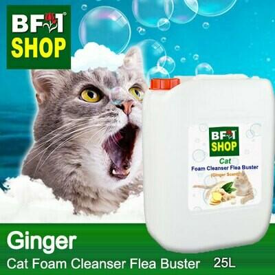 Cat Foam Cleanser Flea Buster (CFC-Cat) - Ginger - 25L ⭐⭐⭐⭐⭐