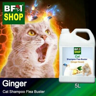 Cat Shampoo Flea Buster (CSO-Cat) - Ginger - 5L ⭐⭐⭐⭐⭐