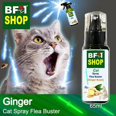 Cat Spray Flea Buster (CSY-Cat) - Ginger - 65ml ⭐⭐⭐⭐⭐