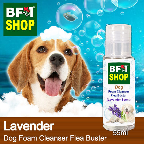 Dog Foam Cleanser Flea Buster (DFC-Dog) - Lavender - 55ml ⭐⭐⭐⭐⭐