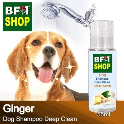 Dog Shampoo Deep Clean (DSDC-Dog) - Ginger - 55ml ⭐⭐⭐⭐⭐
