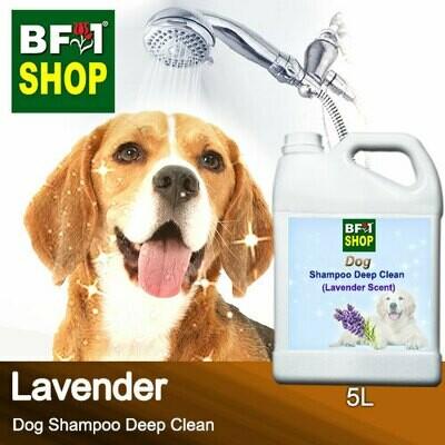 Dog Shampoo Deep Clean (DSDC-Dog) - Lavender - 5L ⭐⭐⭐⭐⭐